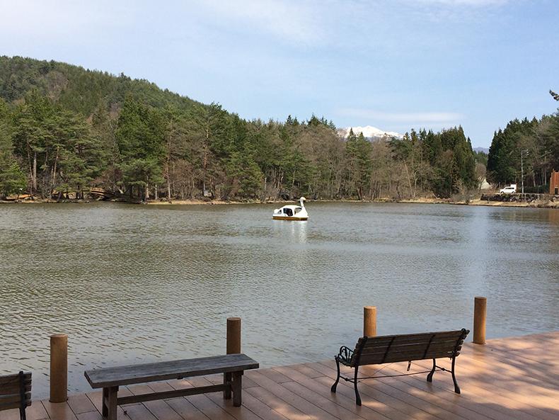 美女ヶ池とスワンボート